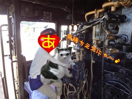 あんみつひめ家3