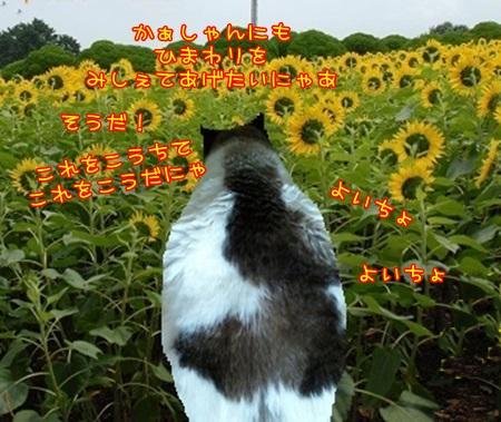 20140810060403ca1.jpg