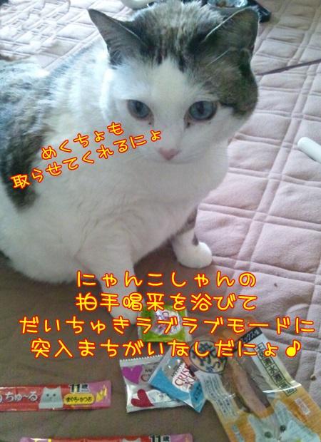 DSC_0176 (2)