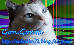 gonnta_meisi.jpg