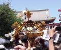 三社祭-02