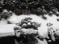2014年2・11 箱根ユネッサン・インの風景6
