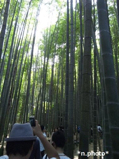 鎌倉 (2)