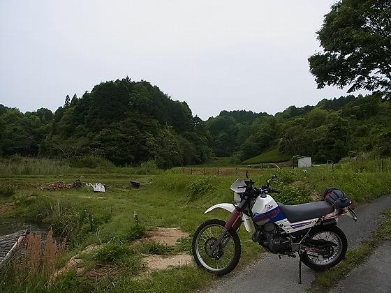 R0016473.jpg