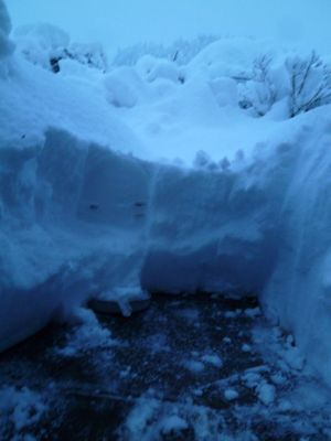 やっぱりチリトリで雪かき