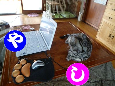 動かずして、どうパソコンを使うか