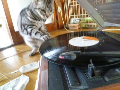 レコードとしま3