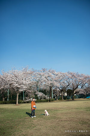 20140331-_MG_2179.jpg
