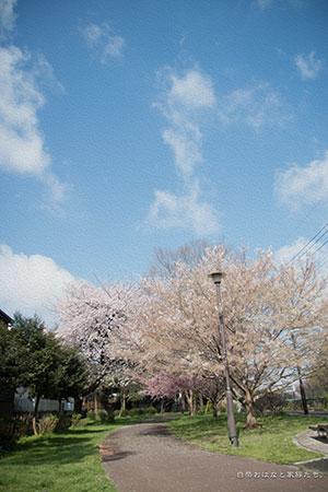 20140406-_MG_2400.jpg