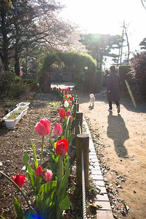 20140411-_MG_2519.jpg