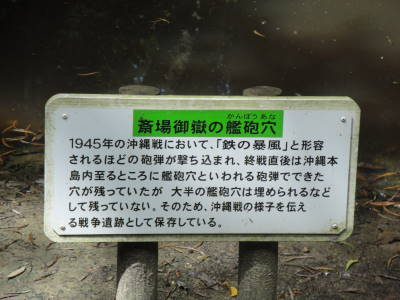 DSC04489.jpg