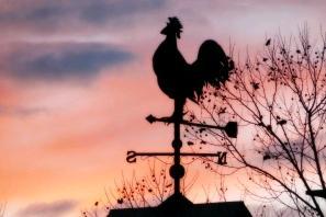 風見鶏 方向 矢印 方角