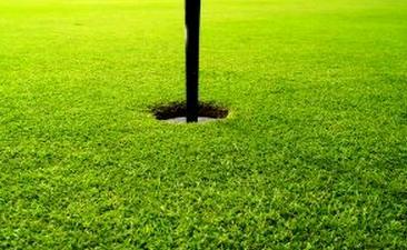 ゴルフ 会員権