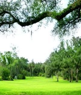 景色 風景 公園