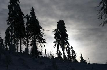 山 冬 悲哀