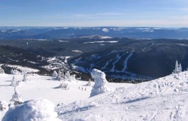 リゾート スキー場
