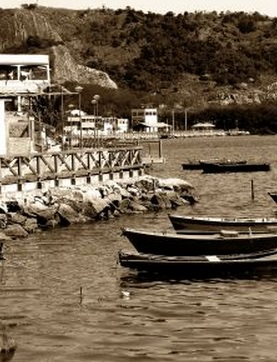 川 荒廃 船