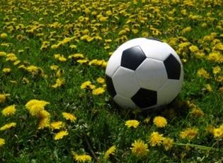 サッカー ボール ゴール