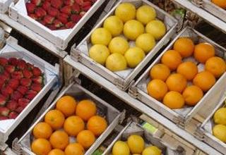 野菜 果物 価格 値段