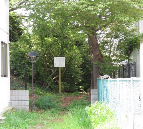 三里塚街道ー53