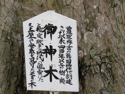大宮神社-1