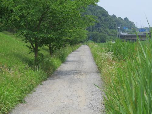 取香川ー14