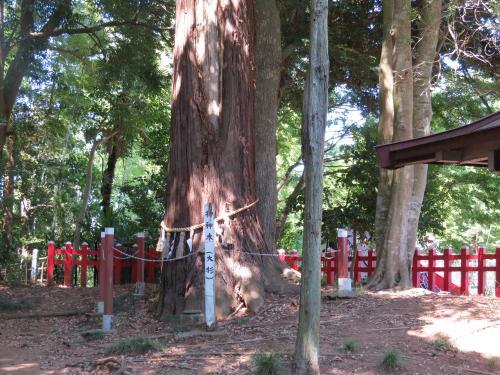 麻賀多神社船形ー14