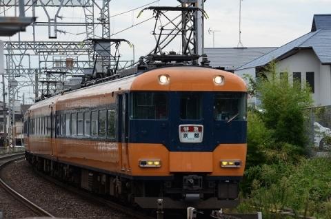 DSC_8238.jpg
