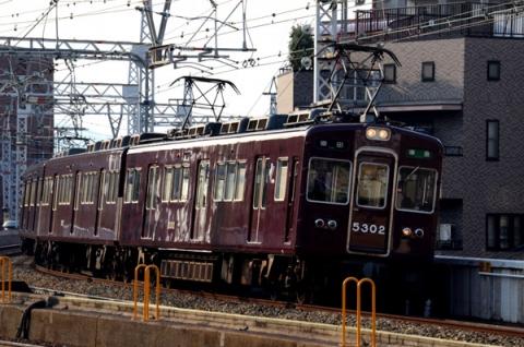 DSC_8859.jpg