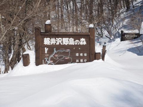 野鳥の森入口140218