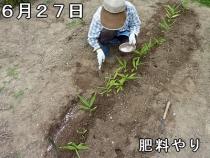 t_P1210846.jpg