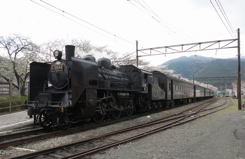 20140400ohigawa_5.jpg