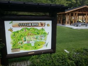 140727イワクラ公園