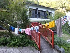 140802洗濯