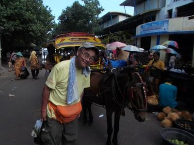 小型の馬の馬車