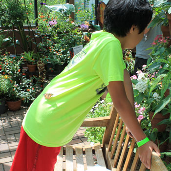 arboretum1407.jpg
