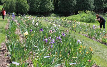 arboretum1408.jpg