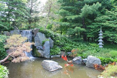 arboretum1419.jpg