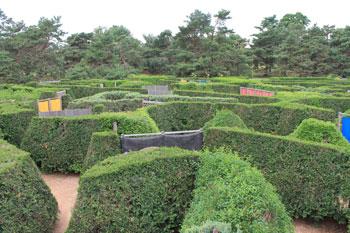 arboretum1430.jpg
