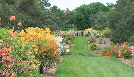 arboretum1432.jpg