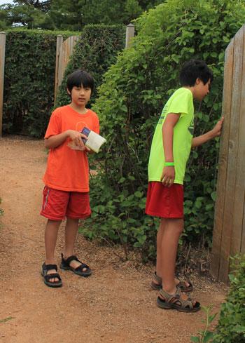 arboretum1447.jpg
