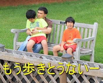 arboretum1448.jpg