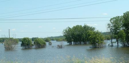 flood1401.jpg