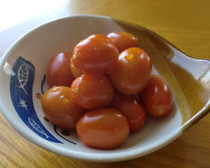 tomatoes1405.jpg