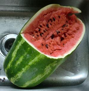 watermelon1401.jpg