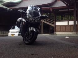 江戸菖蒲07