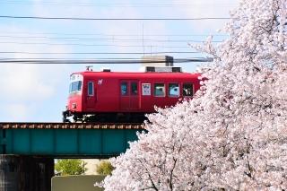 桜と名鉄電車 菅生川橋りょう