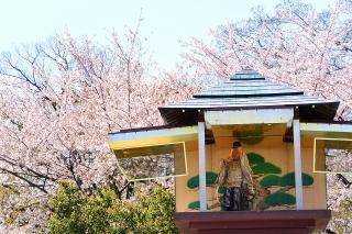 岡崎公園 からくり時計塔