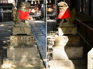 浅間神社の狛犬