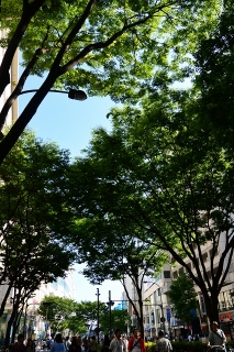 栄ミナミ音楽祭'14 大津通